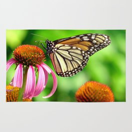 Spotted Butterfly on Cone Flower Rug
