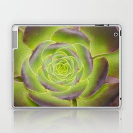 Succulent Glow Laptop & iPad Skin