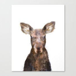 Little Moose Canvas Print