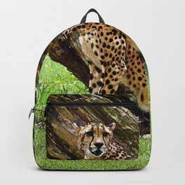 Wild Cheetah Backpack