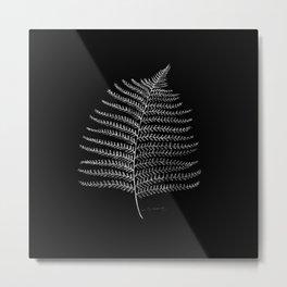 New Zealand Fern Leaf Metal Print