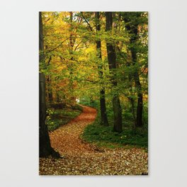way Canvas Print