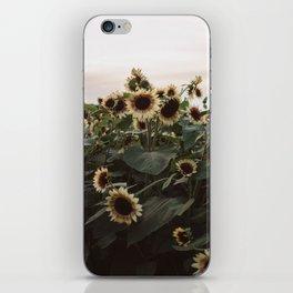 In The Sunflower Field iPhone Skin