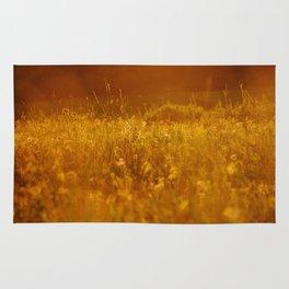 flower field at sunset Rug