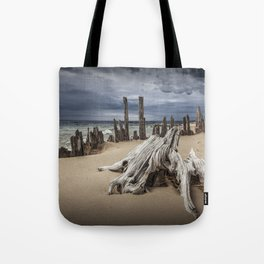 Tree Stump and Pilings on the Beach at Kirk Park by Grand Haven Michigan Tote Bag