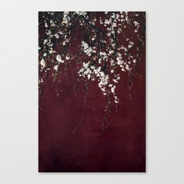 blossoms on ruby red Canvas Print