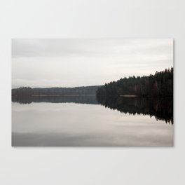 Reflections on a forrest lake Canvas Print