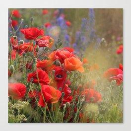 Poppy Magic Canvas Print