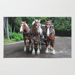 Mackinac Team I Rug
