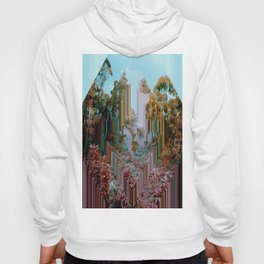 the crystal forest Hoody