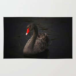 Black Swan Rug