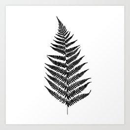 Fern silhouette Art Print