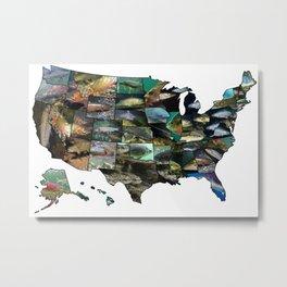 State Fish Metal Print