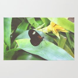Heliconius Doris Butterfly Photography Rug