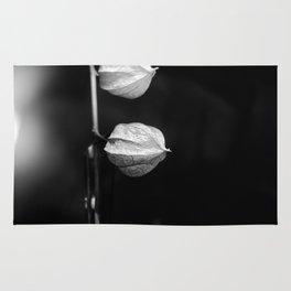 drying flowers Rug