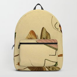 Naturalist Stick Bugs Backpack