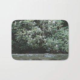 Streams of Living Water 2 Bath Mat