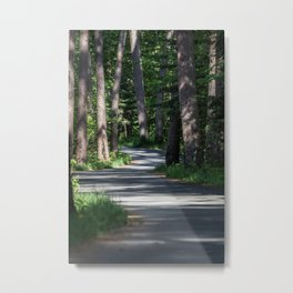 Itasca's Winding Road Metal Print
