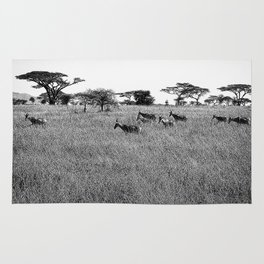 Impala in the grass Rug