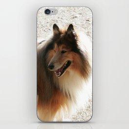 Colli iPhone Skin