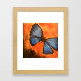 Butterfly in Acrylic Framed Art Print