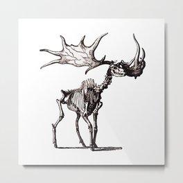 Irish Elk Skeleton Metal Print