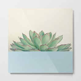 Succulent Dip III Metal Print