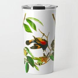 Vintage Scientific Bird & Botanical Illustration Travel Mug