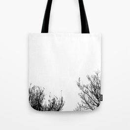 Black Trees  Tote Bag