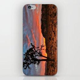 Joshua Tree Sunrise iPhone Skin