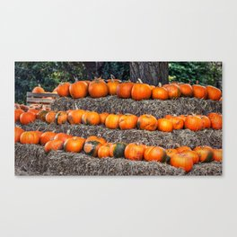 Pumpkin Time. Canvas Print