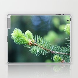 Spruce branch in spring. Laptop & iPad Skin
