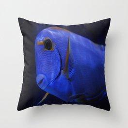blue Tang 3 Throw Pillow