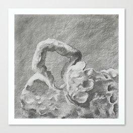 Hand 1 Canvas Print