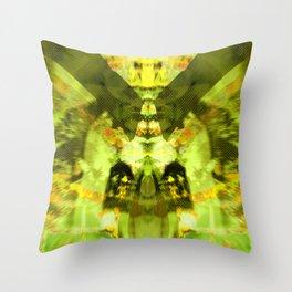 2011-09-05 13_54_37 Throw Pillow