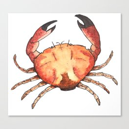 Crab: Fish of Portugal Canvas Print