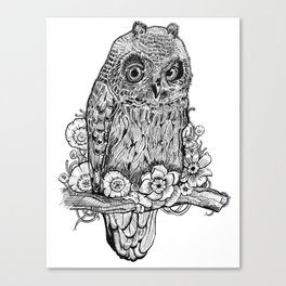 Hoot, hoot Canvas Print