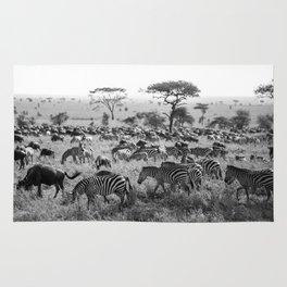 Zebra Stripes Rug