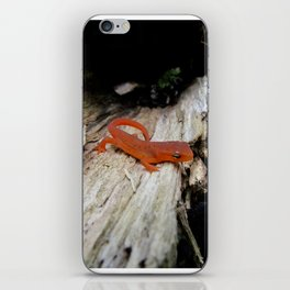 Red Newt iPhone Skin