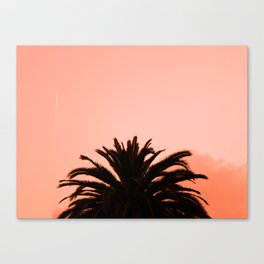 Plant and sky Canvas Print