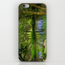 Spring views iPhone Skin