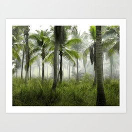 Foggy Palm Forest Art Print