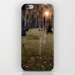 Witch's Hair at Sunrise on the Swamp iPhone Skin