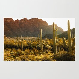 Organ Pipe National Monument #3 Rug