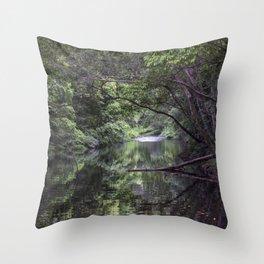 Freshwater Creek Throw Pillow