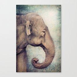 The smiling Elephant Canvas Print
