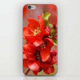 Red 95 iPhone Skin