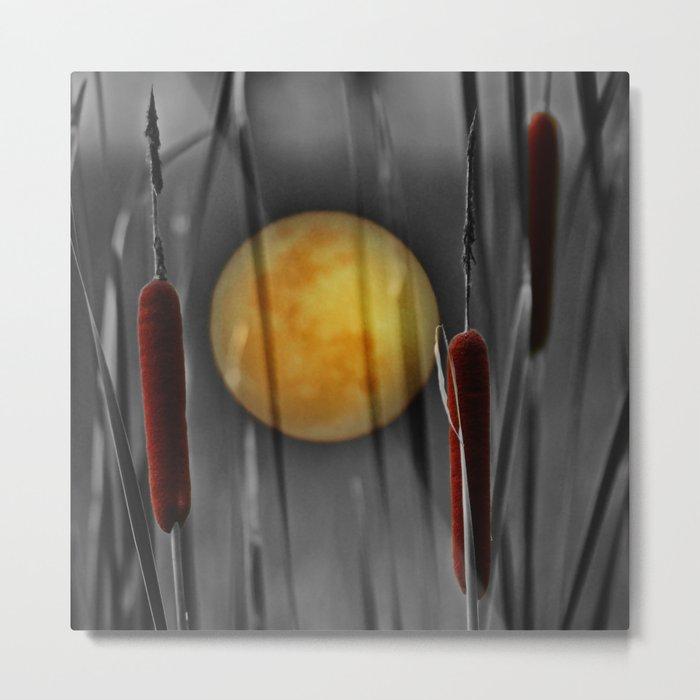Full moon and bulrushes Metal Print
