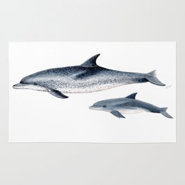 Atlantic spotted dolphin Rug