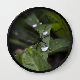 Two Drops Wall Clock